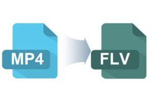 MP4 を FLV に変換
